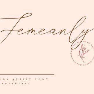 Femeanly Elegant Handwritten Script Font