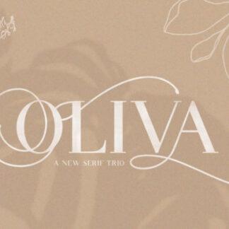 Olivia Serif Font