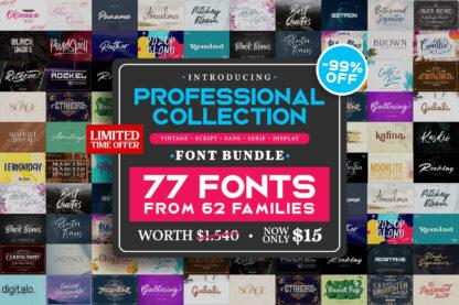 Professional Fonts Bundle
