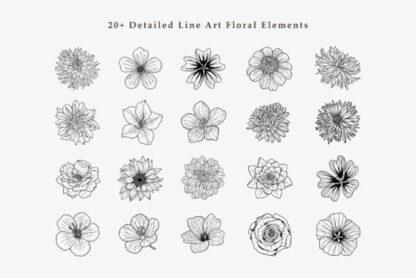 Blossom Line Art Graphics Clipart